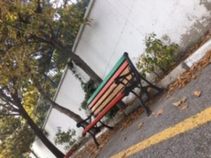 Bank Ağaçlar Dökülmüş yapraklar